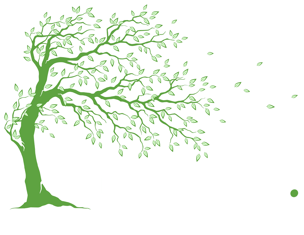Tree Surgery Services Manchester