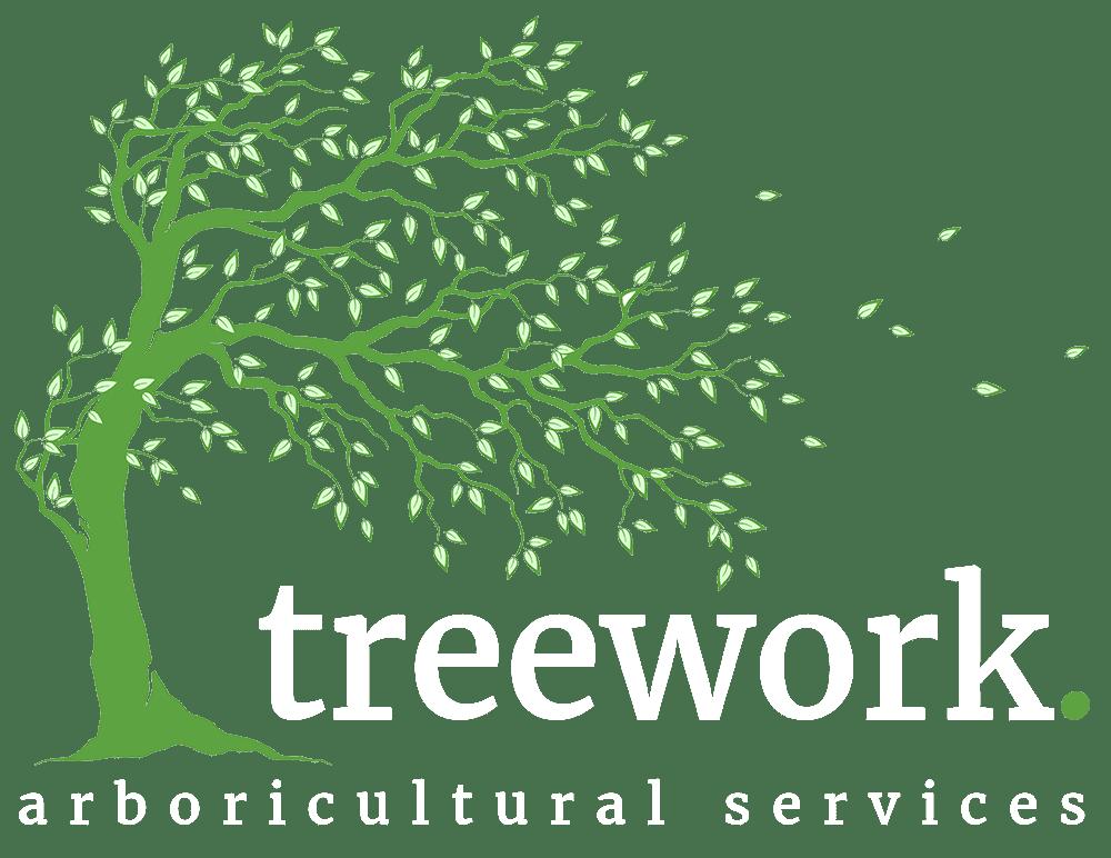 Arboricultural Services Treework Ltd